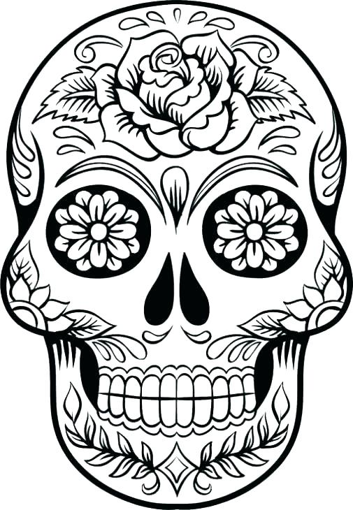 505x730 Bones Coloring Pages Skull Bones Coloring Pages Human Skeleton