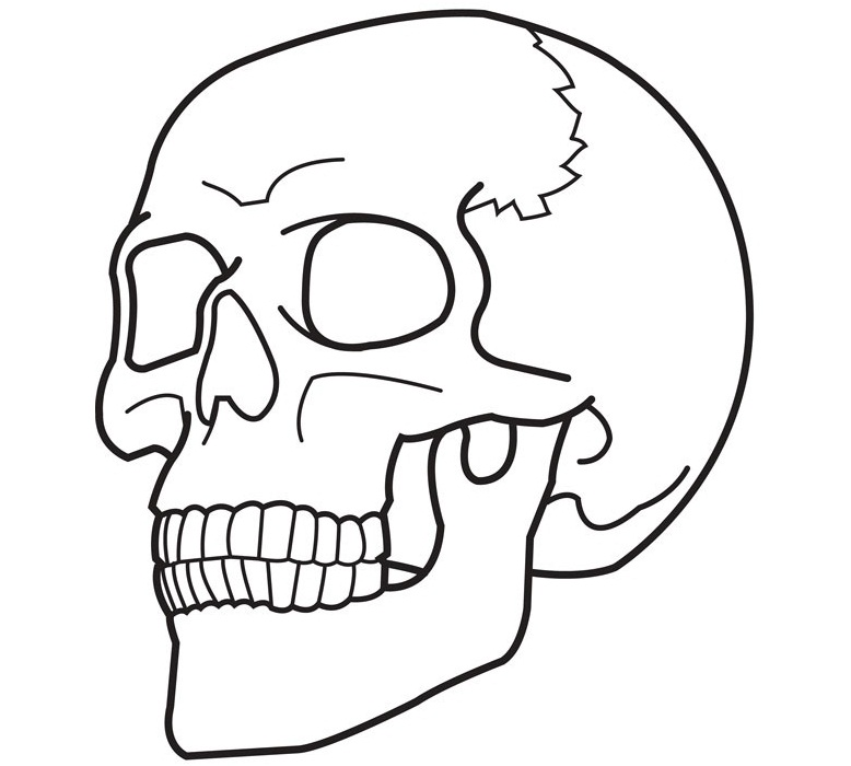 778x700 Skull Coloring Pages