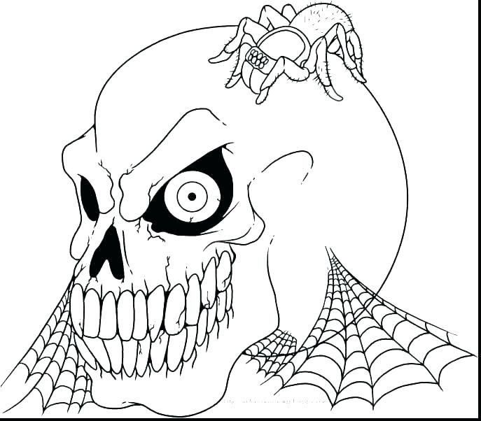 687x602 Skull Coloring Pages Anatomy Skull Coloring Pages Anatomy Free