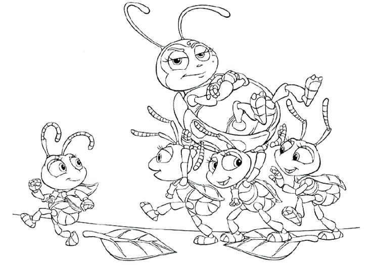736x525 Coloring Bugs Little Bugs Life Coloring Page Ladybug Coloring