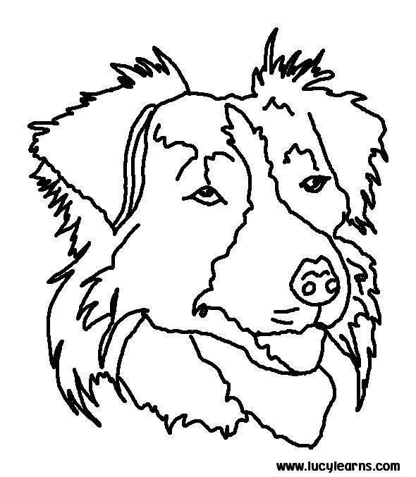 590x677 Dog Coloring Pages