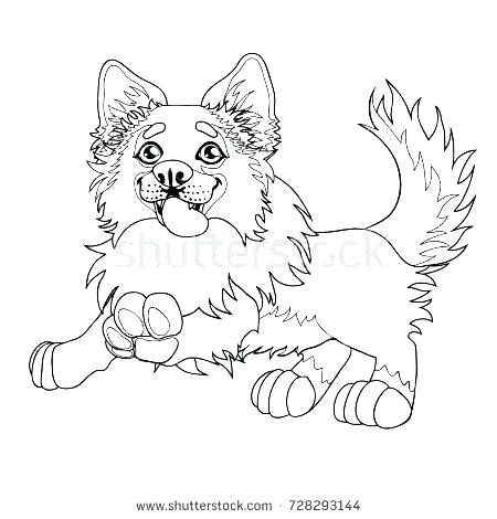450x470 Free Border Collie Coloring Pages Kids Coloring Border Coloring