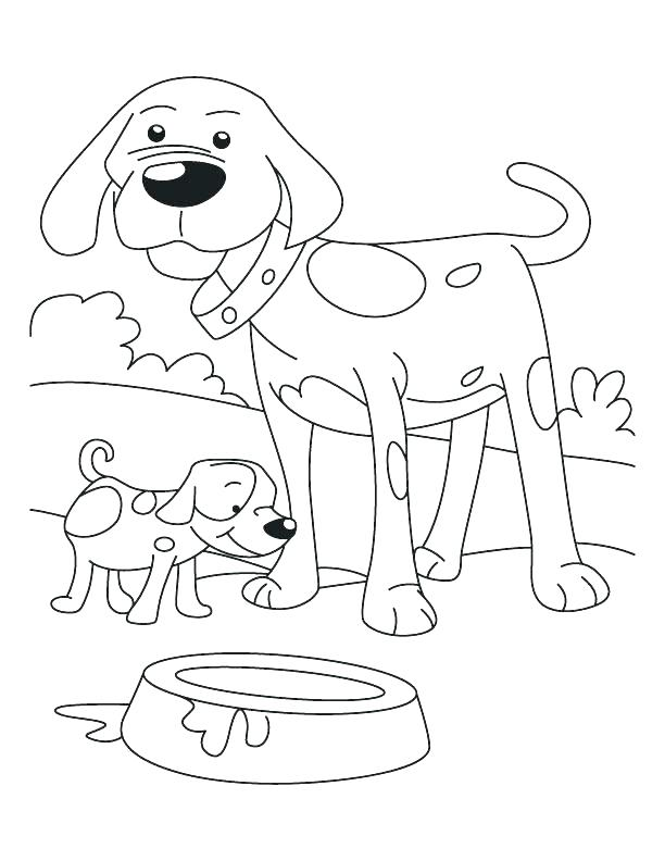 612x792 Border Collie Coloring Pages Dog Puppy Coloring Pages Dogs