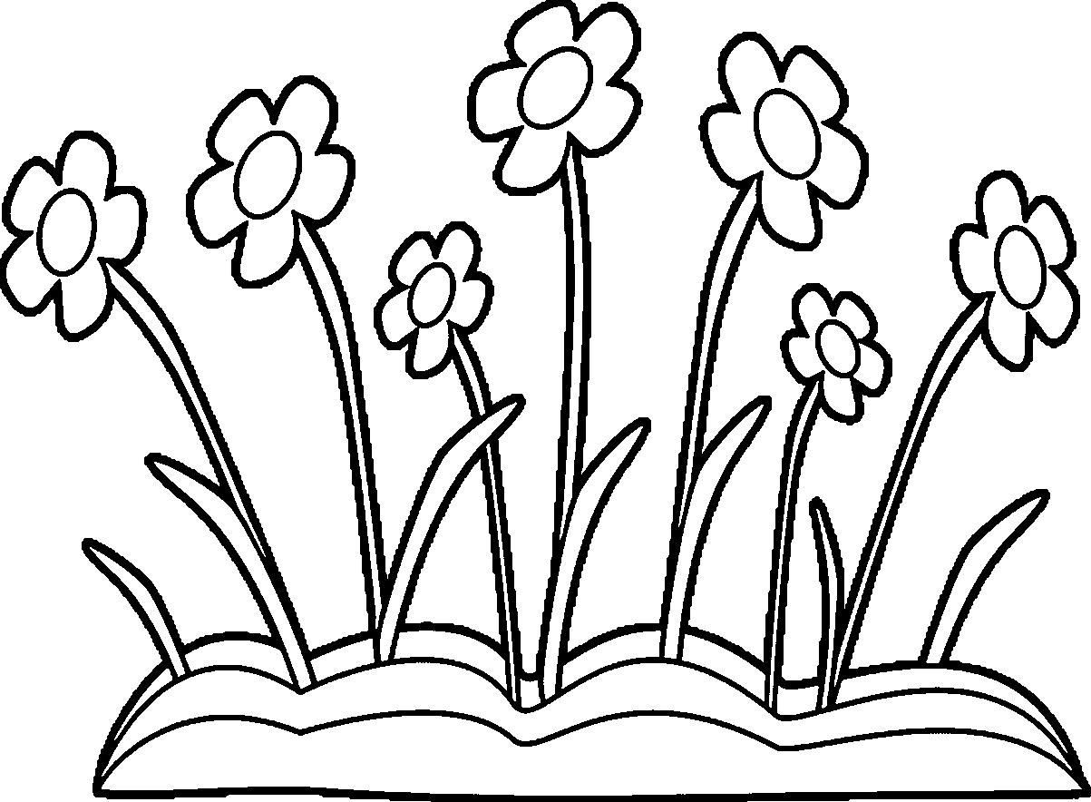 1203x884 Coloring Pages Flower Borders