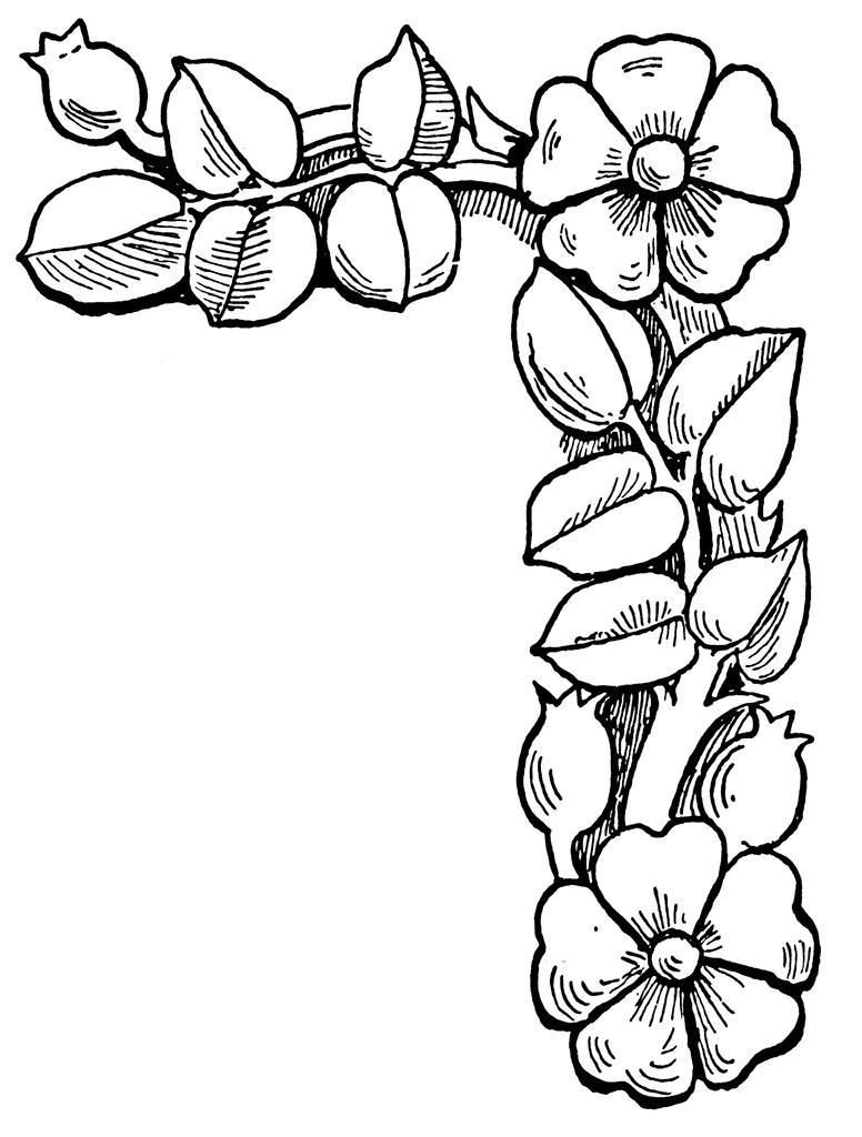 776x1024 Unbelievable Coloring Pages Flower Borders Simple Of Popular