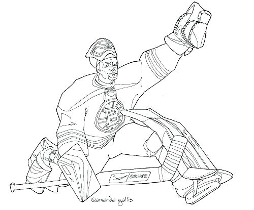 500x415 Boston Bruins Coloring Pages Coloring Pages Of The Red Images