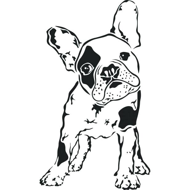 618x618 Boston Terrier Coloring Pages Plus Bulldog