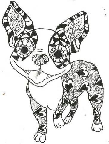 365x480 Boston Terrier Coloring Pages