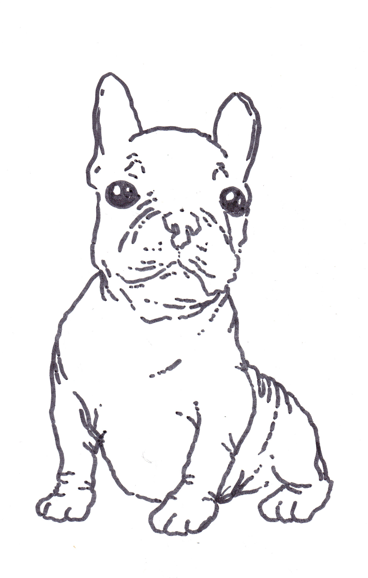 1410x2212 Boston Terrier Coloring Page