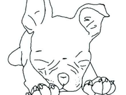 440x330 Terrier Dog Coloring Page