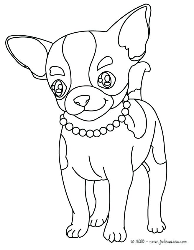 Boston Terrier Coloring Pages at GetDrawings.com | Free for personal ...