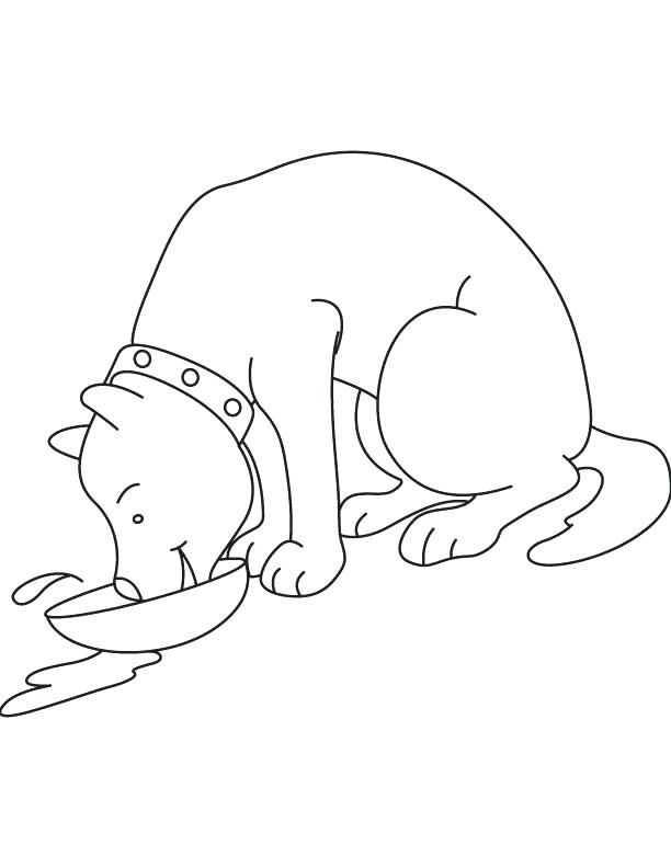 612x792 Milk Coloring Page Dog Drinking Milk Coloring Page Download Free