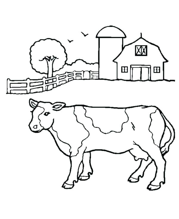 600x734 Milk Coloring Page Milk Coloring Page Milk Bottle Colouring Page