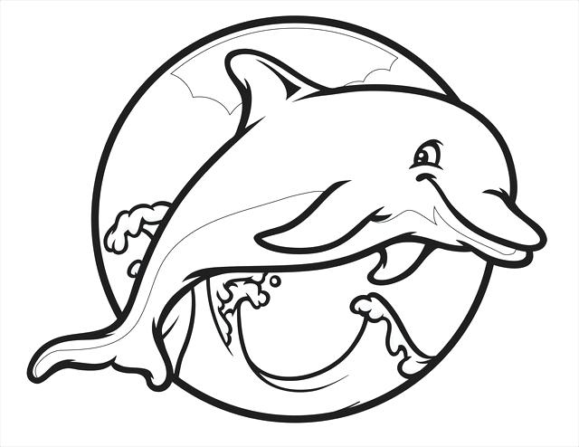 640x494 Bottlenose Dolphin Coloring Page Free Dolphin Coloring Pages