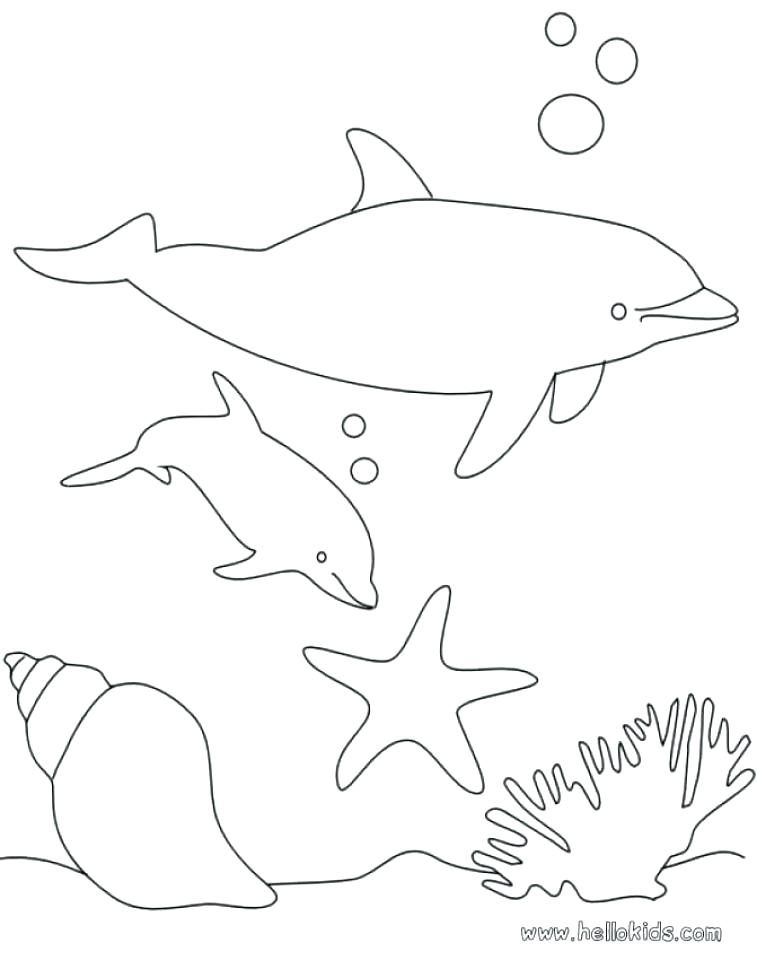 757x960 Dolphins Coloring Pages Cute Dolphin Coloring Pages Playful