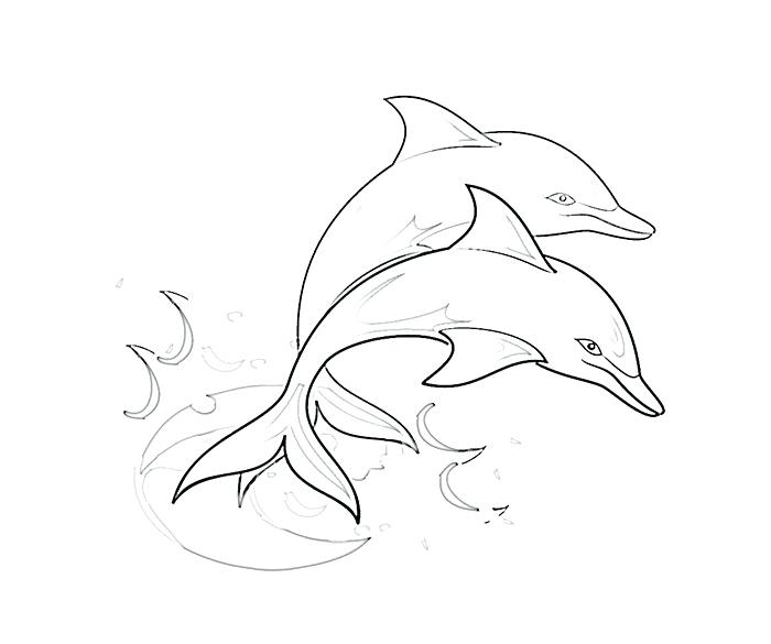 700x585 Bottlenose Dolphin Coloring Page