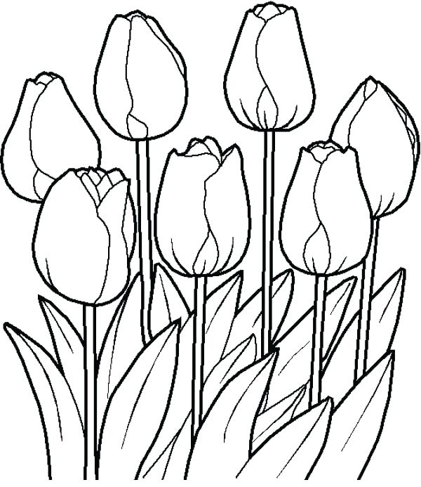 600x693 Garden Flowers Coloring Pages Bouquet Of Flowers Coloring Page
