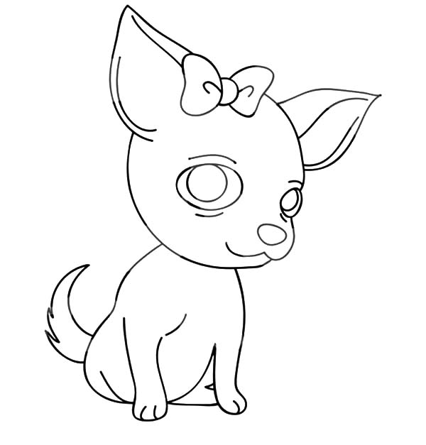 600x627 Chihuahua Dog With A Bow Coloring Pages