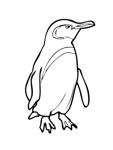 360x480 King Penguin With Bow Tie Coloring Page