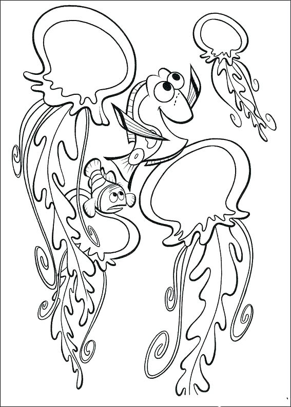 567x794 Jellyfish Color Pages Box Jellyfish Coloring Pages Happy Printable