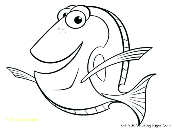 728x546 Coloring Page Fish Color Pages Of Fish Free Coloring Pages Fish