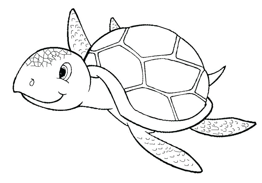 850x594 Ninja Turtle Coloring Book Pages Printable Coloring Coloring Page
