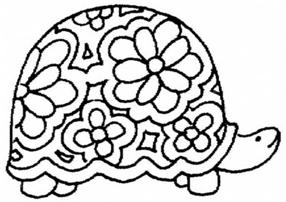 1169x826 Realistic Ornate Box Turtle Coloring Pages Png Furry
