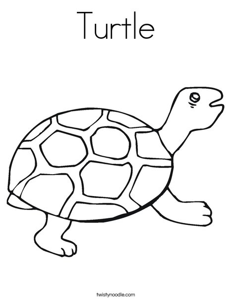 468x605 Turtle Coloring Page