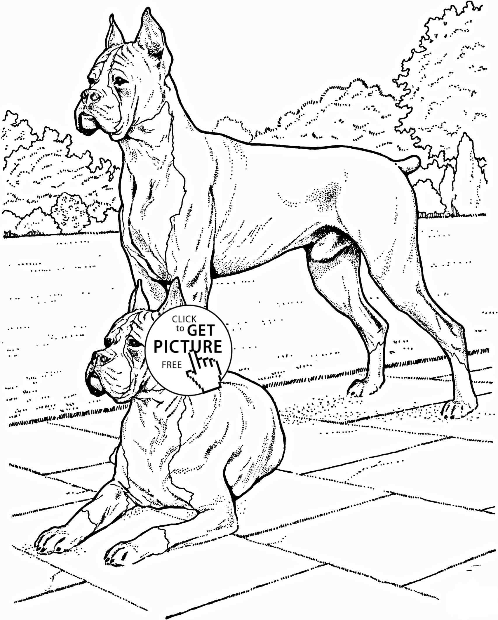 1706x2123 Realistic Boxer Dog Coloring Pages Online Coloring Printable