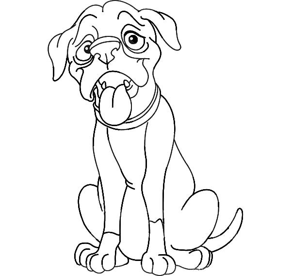 600x569 Thin Boxer Dog Is Hungry Coloring Pages Best Place To Color