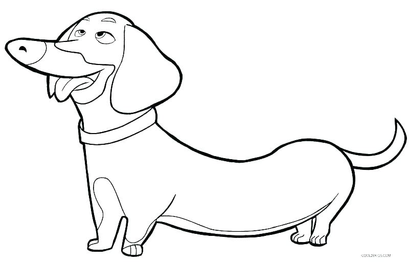 800x512 Boxer Dog Coloring Pages