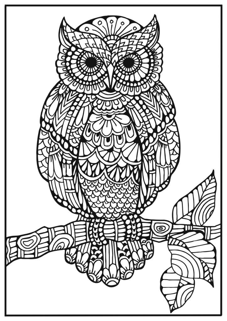 Bra Coloring Pages