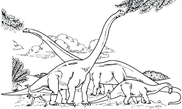 600x361 Brachiosaurus Coloring Page Endorsed Coloring Page Pages Free