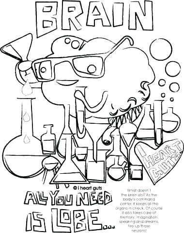 380x480 Brain Coloring Sheet Human Brain Coloring Book Brain Coloring Page