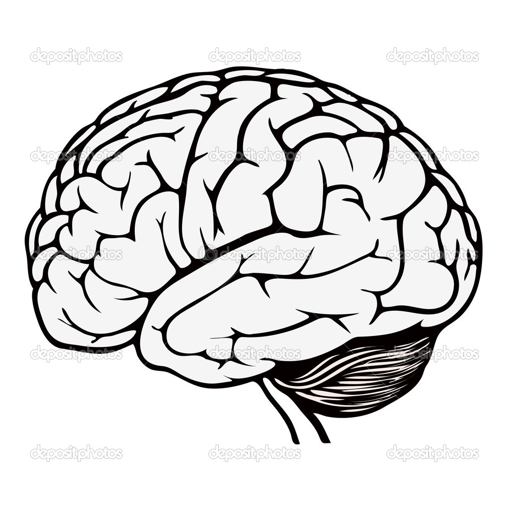 picture regarding Brain Template Printable known as Head Coloring Web page at  Cost-free for particular person