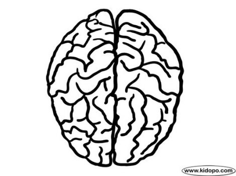 470x350 Draw Brain Coloring Page Additional Line Drawings