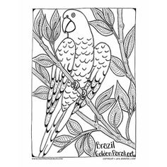 236x236 Thanksgiving Coloring Pages Falling Leaves, Hand Drawn And Adult