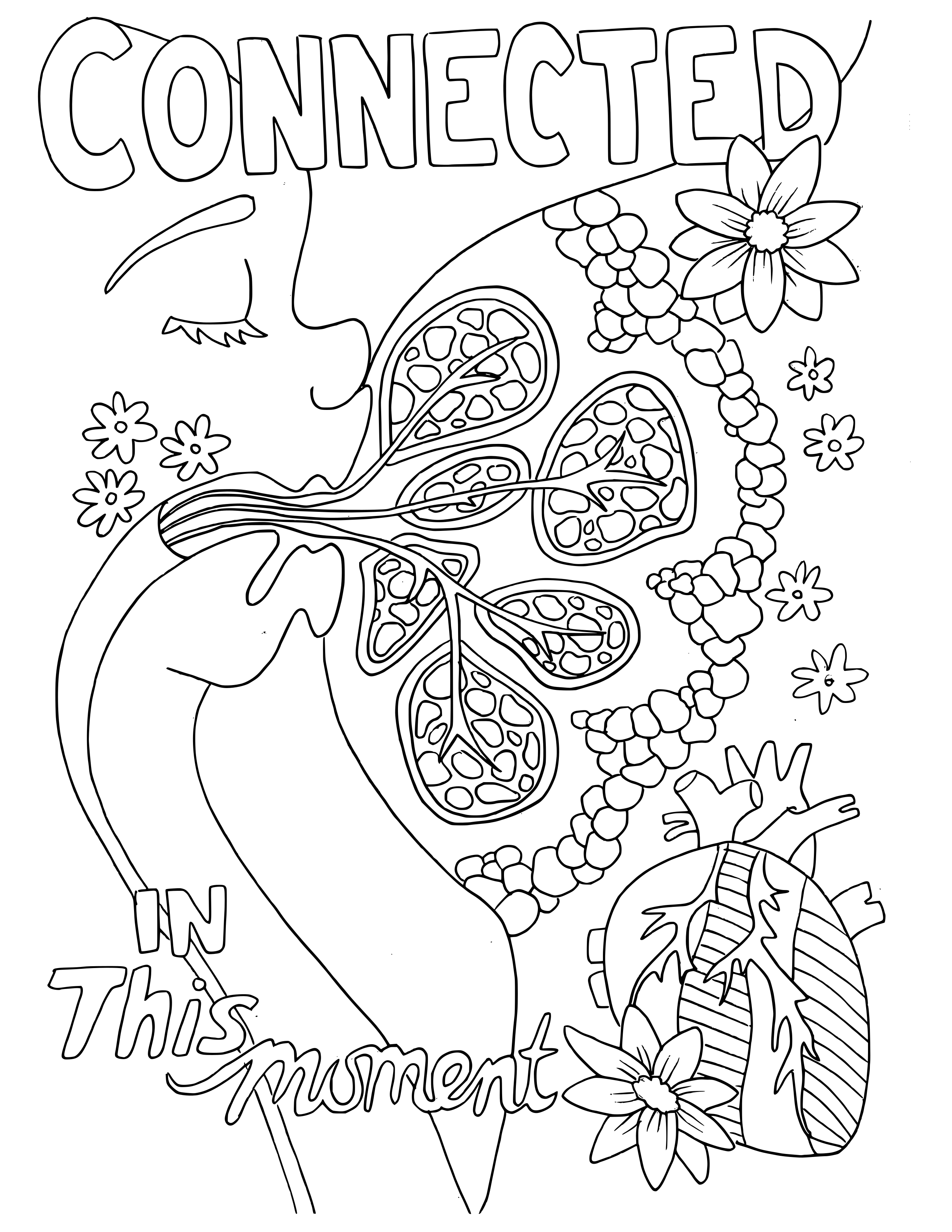 2550x3300 Adult Coloring Book