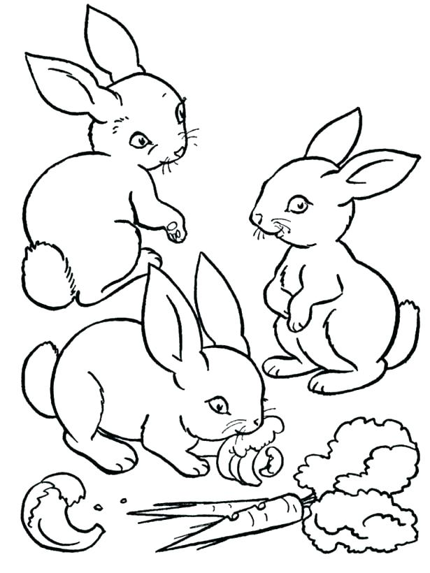 615x820 Rabbit Coloring Page Rabbit Head Coloring Page Brer Rabbit