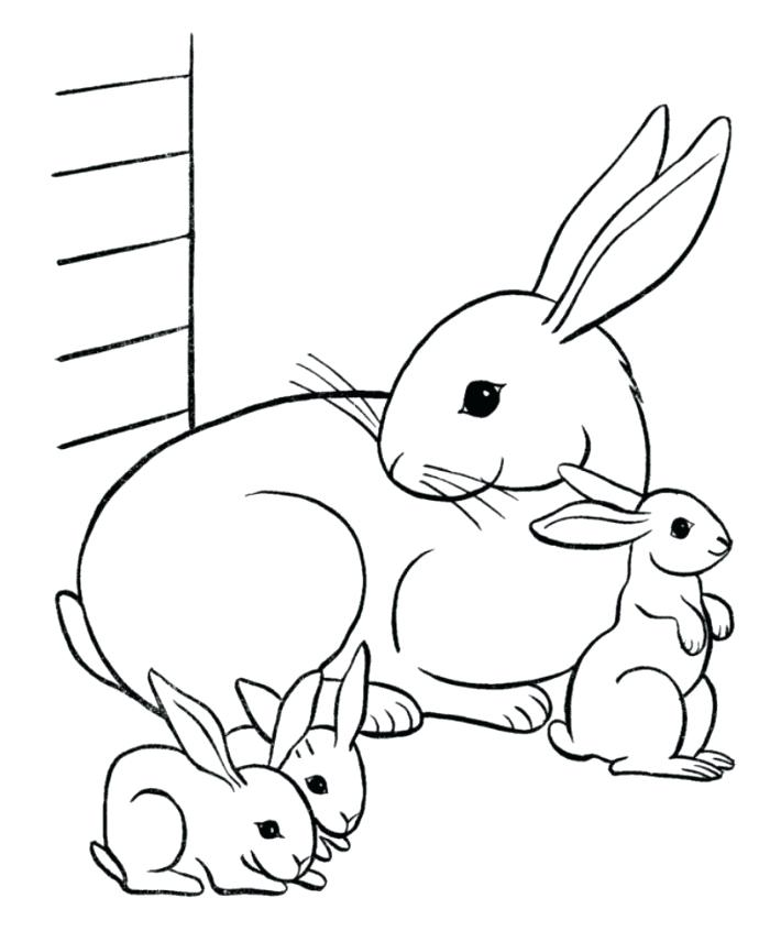 700x856 Captivating Free Rabbit Coloring Pages Captivating Free Rabbit
