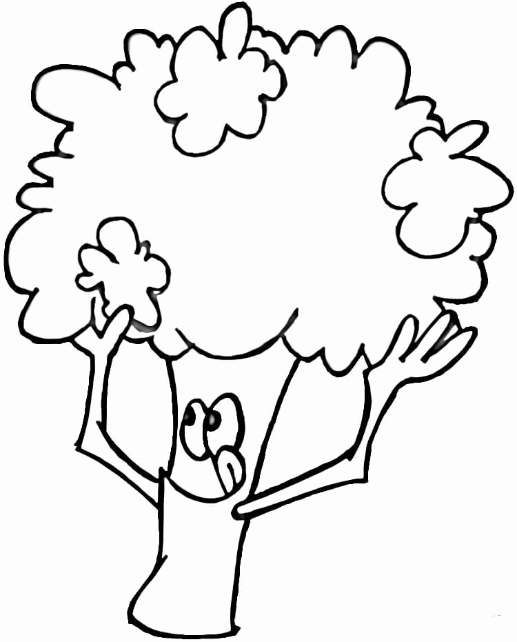 Broccoli Coloring Page At Getdrawings Com Free For Personal Use