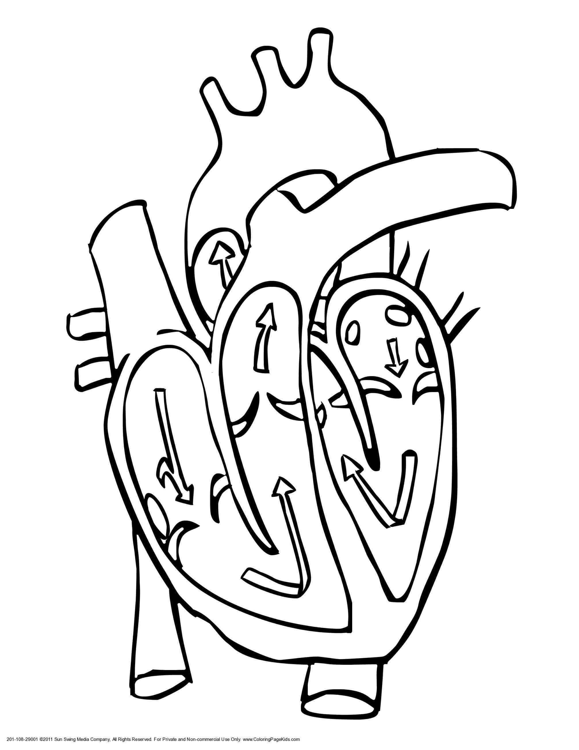 2014x2607 Broken Heart Coloring Pages For Adults Your Meme Source