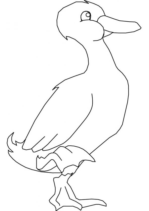 600x849 Goose Stand With One Foot Coloring Page
