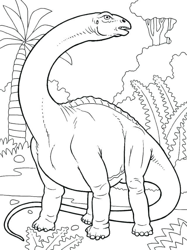 640x855 Brontosaurus Coloring Page Pterodactyl Coloring Page Pterodactyl