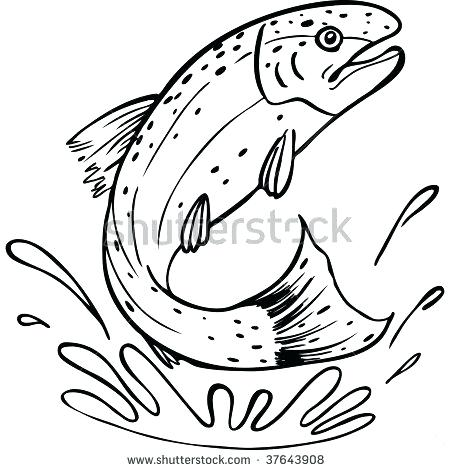450x470 Brook Trout Pen And Ink Vinyl Decal