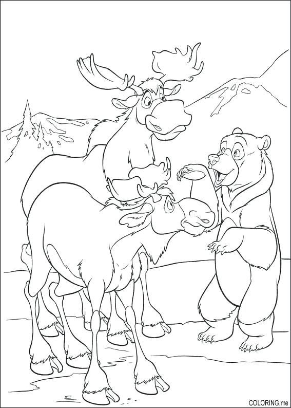 567x794 Brother Bear Coloring Pages Brother Bear Coloring Page Disney