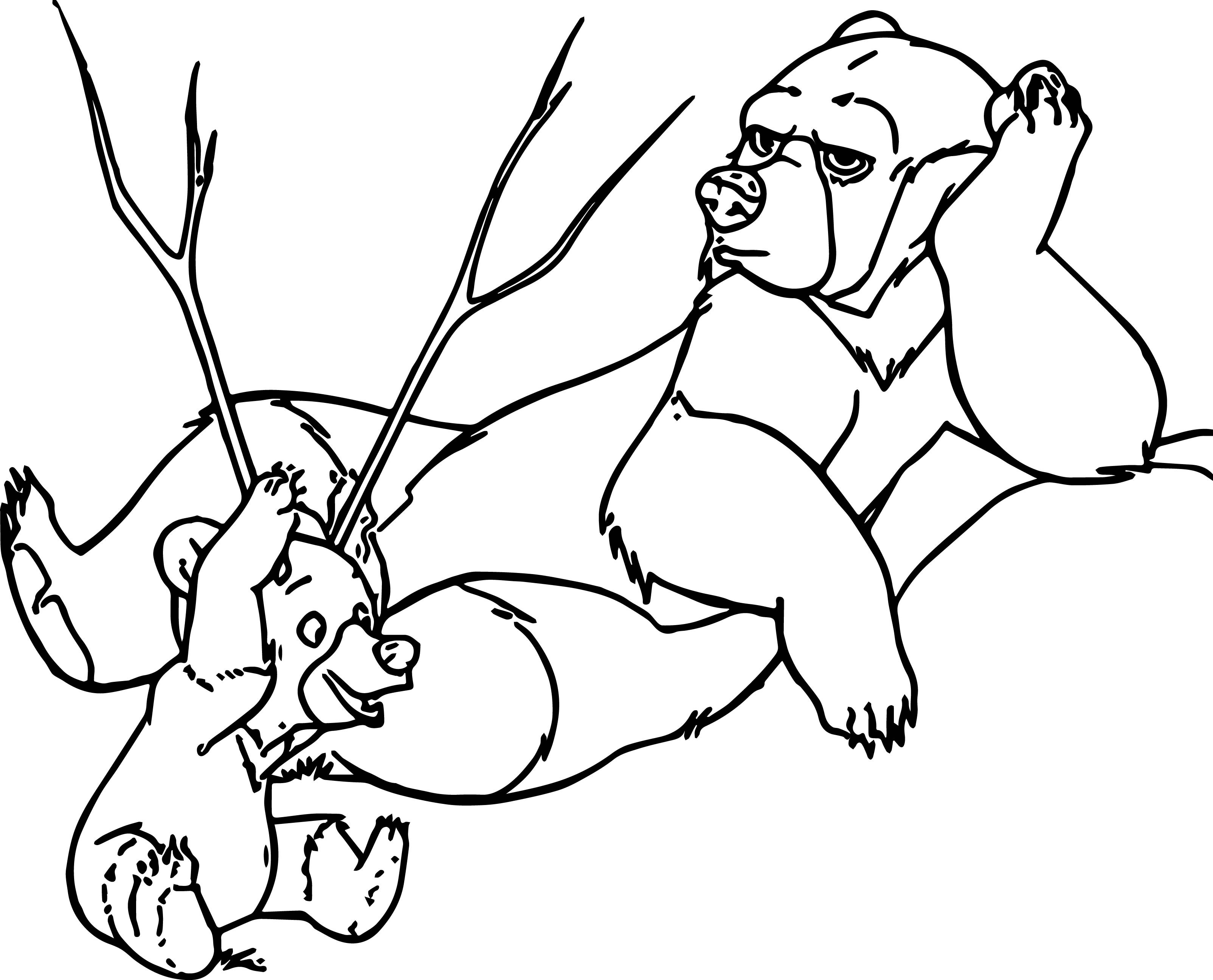 3208x2593 Brother Bear Coloring Pages For Kids Beautiful Disney Brother Bear