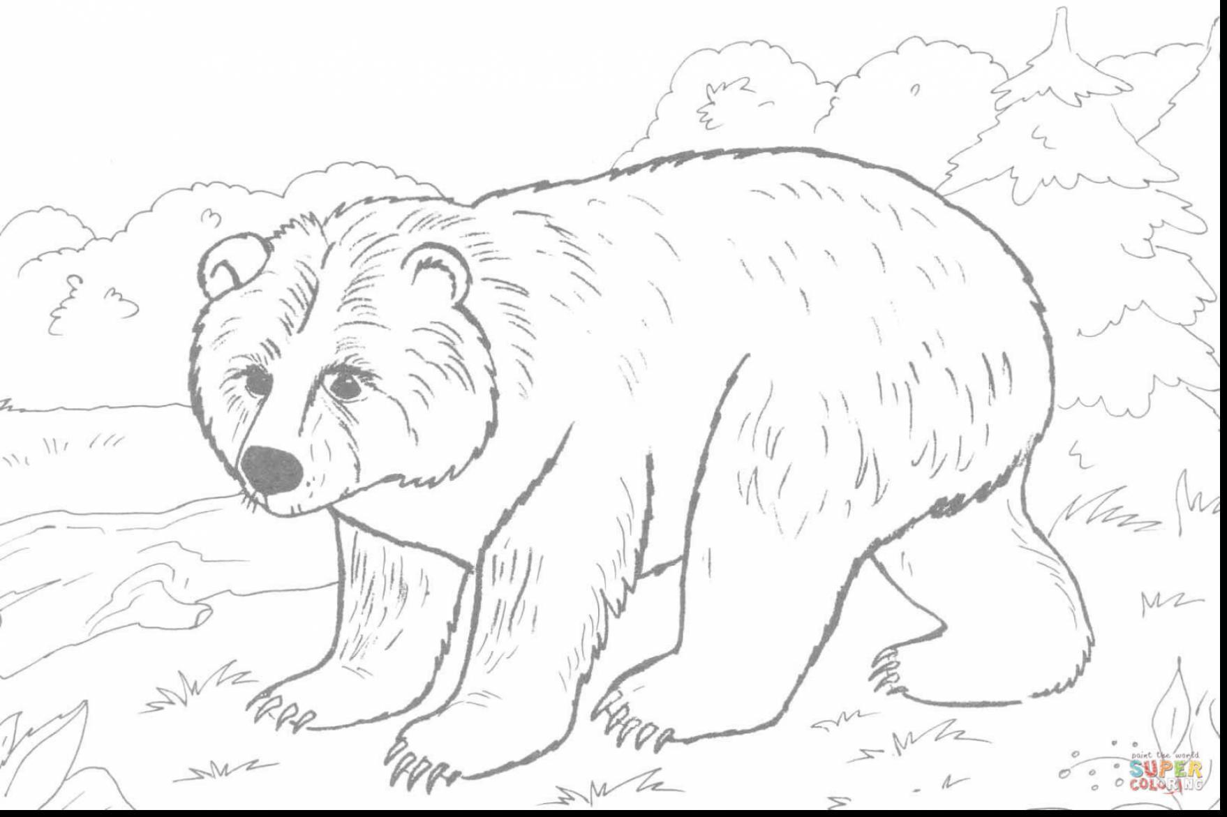 1758x1171 The Best Good Brown Bear Do You See Coloring Pages With Pic