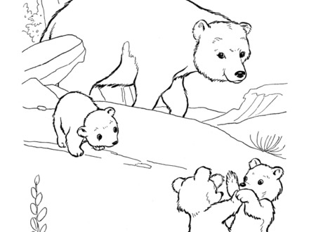 440x330 Brown Bear Brown Bear What Do You See Coloring Pages, Brown Bear