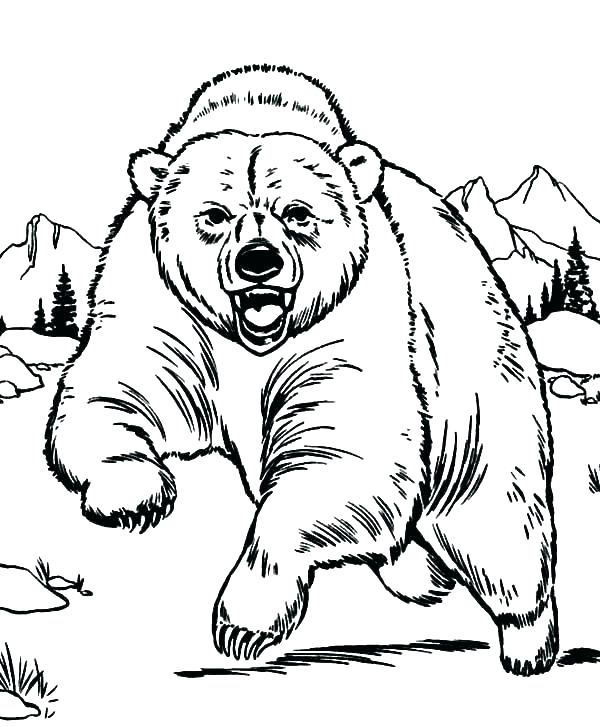 600x727 Brown Bear Coloring Page Brown Bear Coloring Pages Brown Bear